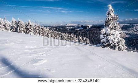Hala na Malej Raczy mountain meadow bellow Wielka Racza hill with trees, hills on the background and blue sky in Beskid Zywiecki mountains in Poland during freezing winter day