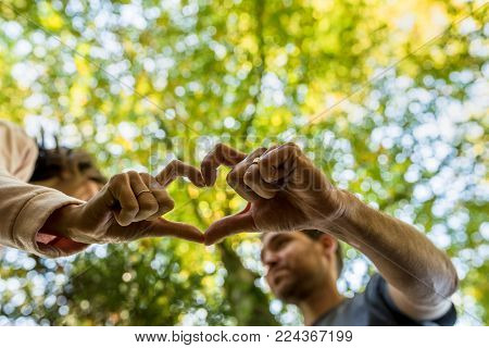 Man and woman making a shared heart gesture with their fingers to show their love in a low angle view looking up at autumn trees.