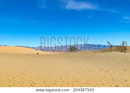 Amazing picture of the desert and blue sky in Arizona, US