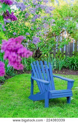 Adirondack chair in a backyard garden.