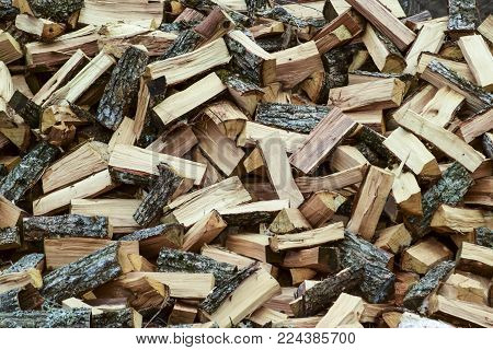 A pile of punctured firewood. Harvested wood for the stove.