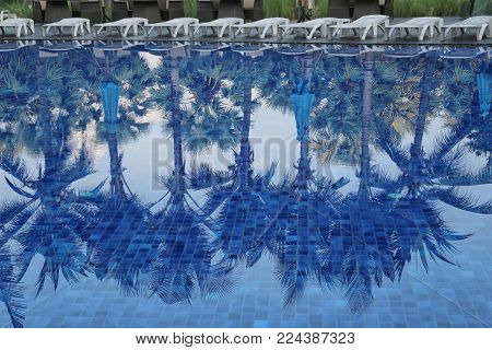 Blue swimming pool of resort in a daytime and reflection of shadow coconut trees on the surface.
