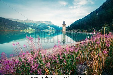 Beautiful view of the lake Resia. Famous tower in the water. Alps, Italy, Europe. Landscape photography