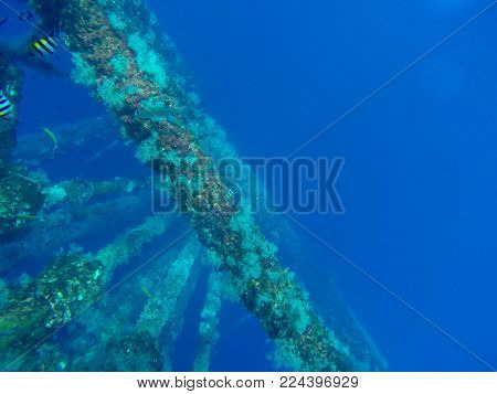Oil and gas wellhead platform, under water shooting show oil and gas production tubing and platform jacket legs with coral at pipeline.