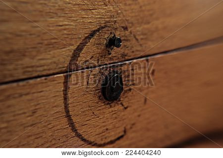 background abstract structure of lacquered spruce wood