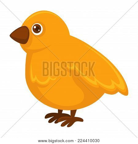 Little fluffy yellow chicken with small sharp beak and big round shiny eye isolated cartoon flat vector illustration on white background. Baby bird with soft wings on sharp claws of brown color.