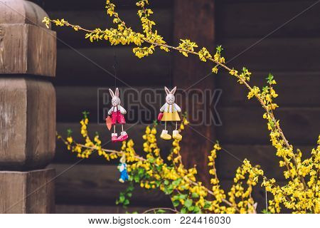 April, 12th, 2017 - Potsdam, Brandenburg, Germany. Traditional festive Easter rabbits handmade decorations and blossoming yellow tree during Easter celebration in Potsdam.