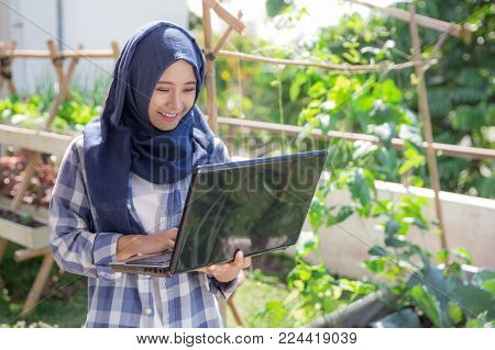 urban farming. attractive asian muslim woman with laptop in the farm