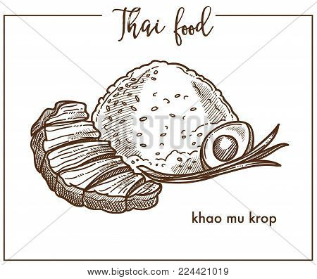 Khao mu krop with egg from Thai food. Delicious dish composed of cooked rice, boiled egg and bunch of leek served with roasted pork isolated cartoon flat vector illustration on white background.