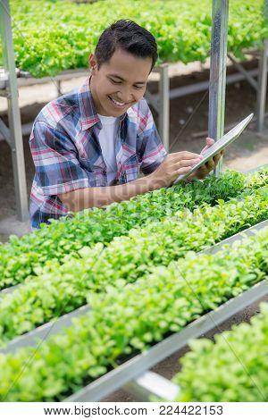 asian farmer looking at new plant while using tablet pc