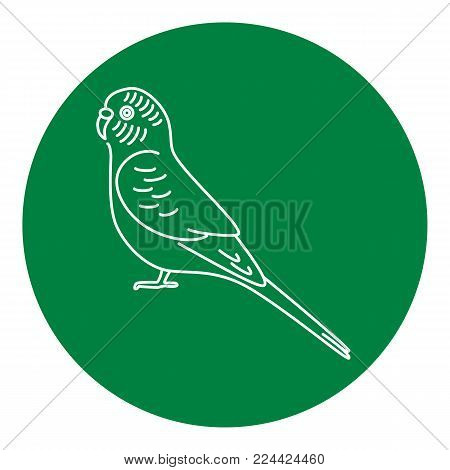 Budgerigar or budgie parrot icon in thin line style. Australian tropical bird symbol in round frame.
