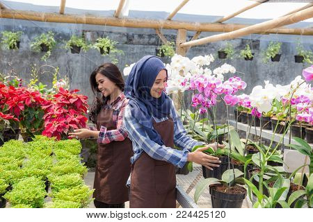 two happy asian female florist working in the flower shop