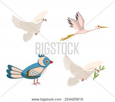 Bird icon set. Cartoon set of bird vector icons for web design isolated on white background