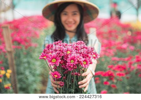 close up portrait of a young asian woman showing red chamomile flowers