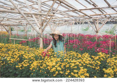 portrait of beautiful asian woman working in chamomile flowers farm