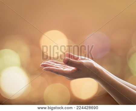 Women prayer hand praying for spiritual support, donation, peace and for holy spirit week concept