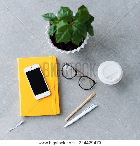 Office desk table with notebook planner, smart phone, glasses, coffee tree and coffee cup. Top view with copy space