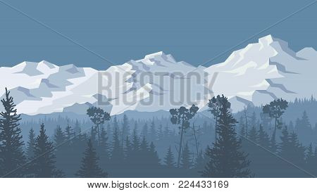 Horizontal vector illustration of coniferous forest and spruce trees with snowy mountains.