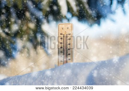 Thermometer In Snow During A Snowfall. Snowy Trees In The Background Frosty Day. Winter Concept