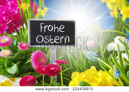 Sign With German Text Frohe Ostern Means Happy Easter. Sunny Spring Flower Meadow With Daisy, Narcissus, Primrose And Hyacinth.