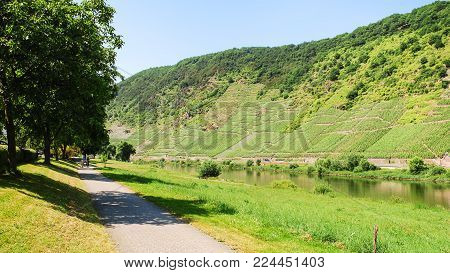 travel to Germany - pedestrian path along Moselle river near Cochem town in summer day