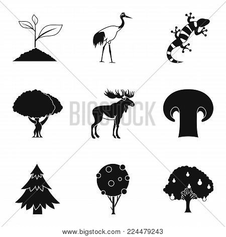 Animate nature icons set. Simple set of 9 animate nature vector icons for web isolated on white background