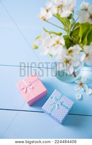 Two Little Gift Boxes With Beautiful Bouquet Of White Flowers Of Blooming Cherry Branches On Blue Wo
