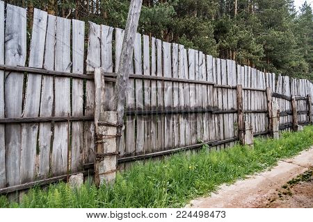 Old Fence Enclosing An Old Pine Forest