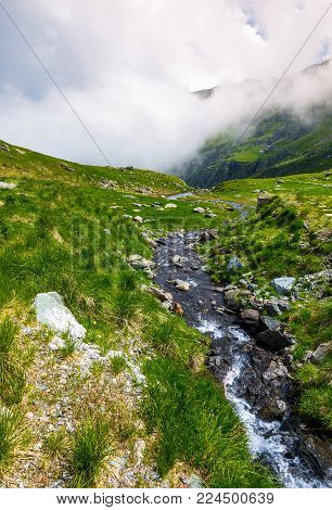 wild brook of Fagaras mountains. beautiful summer landscape with grassy slope and rocky cliffs. low clouds cover the top of mountain ridge