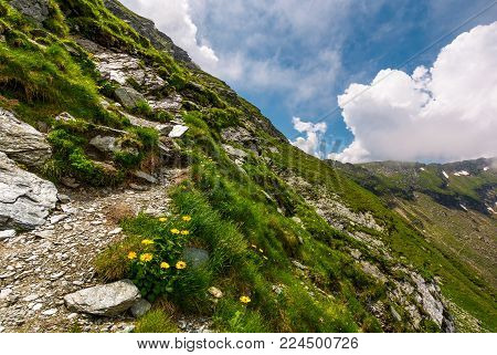 path along the steep slope. beautiful summer landscape with rocks on grassy hillside. low clouds cover the top of mountain ridge