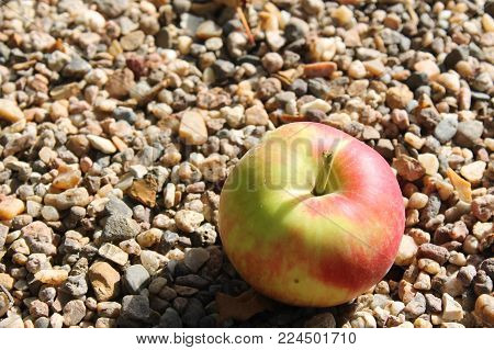 Red, green and yellow apple in a floor of stones.