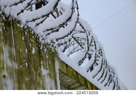 Metal barbed wire fence on the concrete 2018