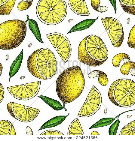 Lemon vector seamless pattern drawing. Summer citrus fruit print.  Isolated hand drawn whole lemon and slice.   Vegetarian tropical food. Great for wallpaper, fabric, packaging