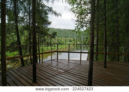 observation deck with tree trunks passing through the boardwalk above a precipitous river bank in a natural park in rainy weather