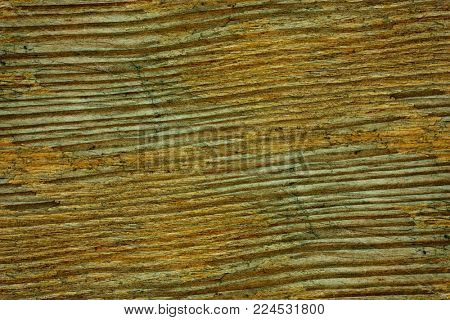 texture of the old outdoor wood, closeup