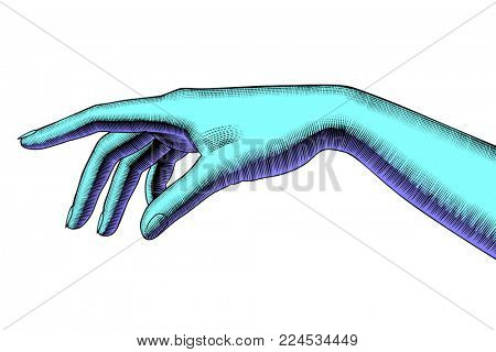 Woman's pointing hand. Vintage colorized engraving stylized drawing