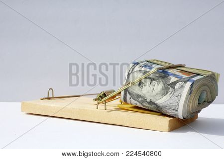 us money in a Mouse or Rat Trap. the most popular money.