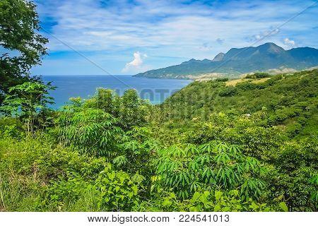 Lush tropical coastal landscape of the Nusa Teggara Flores Island, Indonesia