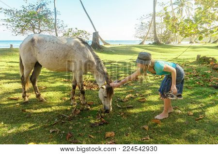 acquaintance of people and animals. the girl in the hat stroking grazing on a green meadow horse