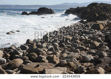 This is an image of rocks at low tide along the coast of Pacific Grove, California.