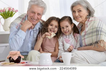 Portrait of a Portrait of a happy senior couple with grandchildren  at home drinking tea