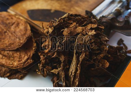 Process of making traditional cigars from tobacco leaves. Leaves of tobacco for making cigars. Close-up, soft focus and beautiful bokeh.