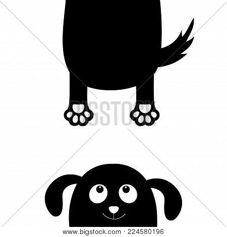 Black dog Funny face head silhouette. Hanging fat body with paw print, tail. Cute cartoon character. Kawaii animal. Baby card. Pet collection. Flat design White background Isolated Vector illustration