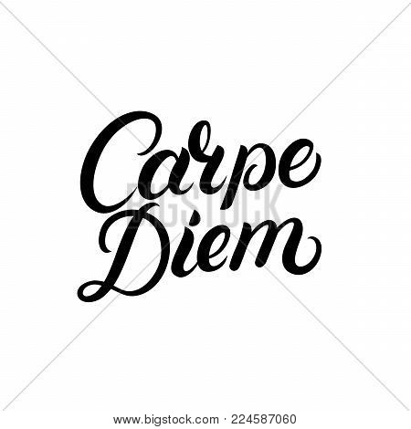 Carpe diem hand written lettering quote. Modern brush calligraphy typography phrase. Enjoy the moment. Isolated on background. Vector illustration.