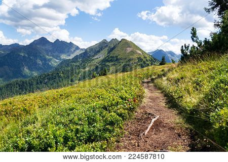 Hiking trail in Alps, Austria, life way change happiness concept