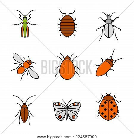 Insects color icons set. Grasshopper, woodlice, ground beetle, honey bee, mite, cockroach, butterfly, ladybug. Isolated vector illustrations