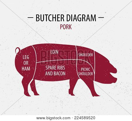 Cut of pork. Poster Butcher diagram for groceries, meat stores, butcher shop, farmer market. Poster for meat related theme. Pig silhouette. Vector illustration.