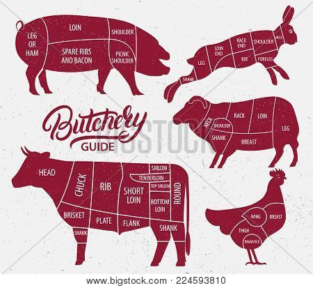 Animal farm set. Cut of beef, pork, lamb, chicken, rabbit. Poster Butchers diagram for groceries, meat stores, butcher shop, farmer market. Cow, pig heep, chicken, rabbit silhouette