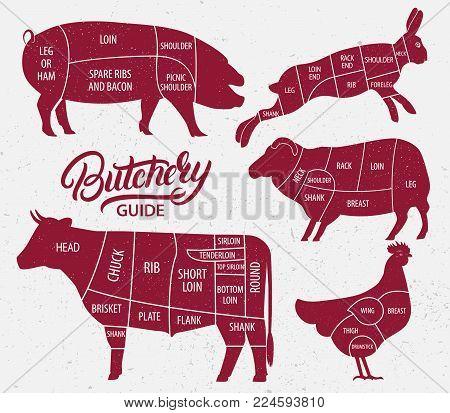 cut of beef, pork, lamb, chicken, rabbit
