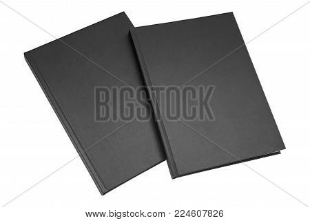 two brown books isolated on white background, blank spines